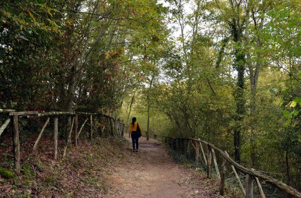 sentiero per Eremo di Montesiepi 1