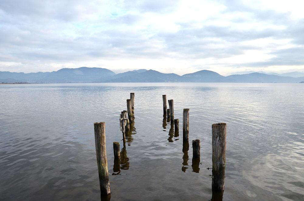 Lago tTorre del lago Puccini